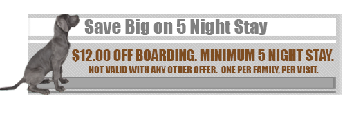 Save Big on 5 Night Stay - $12.00 Off Boarding. Minimum 5 Night Stay. Not Valid With Any Other Offer. One Per Family, Per Visit.