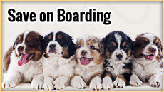 Save on Boarding