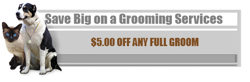Save Big on a Grooming Services - $5.00 Off Any Full Groom